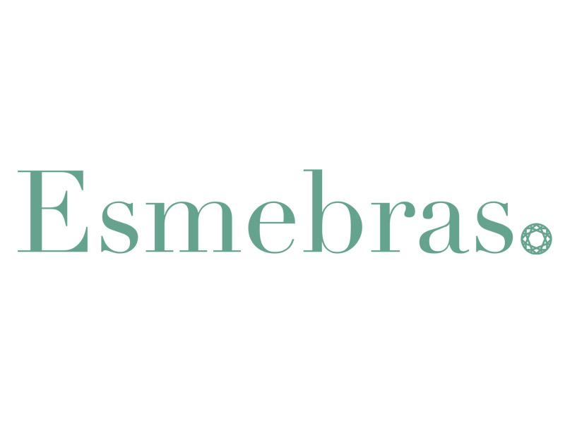 https://feninjer.com.br/wp-content/uploads/2021/01/esmebras-1.jpg